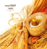 Wheat & candle — 图库照片