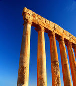 Jupiter's temple columns over blue sky — Stock Photo