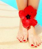 Schöne weibliche beine auf der pool — Stockfoto