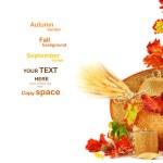 confine di foglie d'autunno — Foto Stock