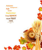 Autumn leaves border — Stock Photo