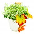 Bucket of autumn leaves & wildflowers — Stock Photo