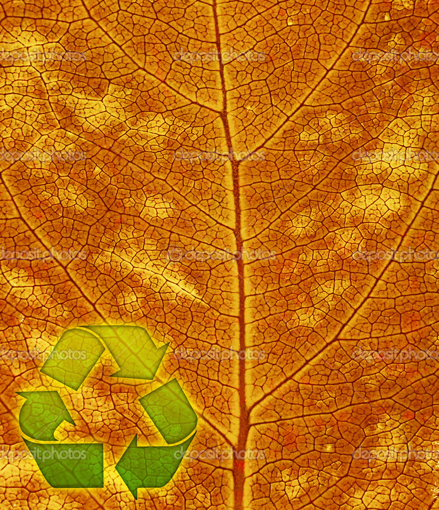 Recycle symbol on the leaf background — Stock Photo #6645288