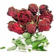 Royalty-Free Stock Photo: Dried red roses