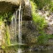 Stock Photo: Waterfall with vegetation on sides