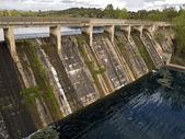 Dam old left with many vegetation — Stock Photo