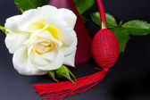 A white rose and red spray — Stock Photo