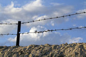 Old wall with barbed wire and crystals — Stockfoto