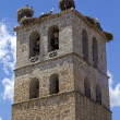 Royalty-Free Stock Photo: Church tower in Manzanares el Real with storks