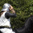 Medieval knight on his horse galloping — Stock Photo #6603214