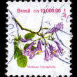 Postage stamp. — Stock Photo #5938602