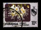Briefmarke. — Stockfoto