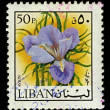 Postage stamp. — Stock Photo #6411953