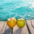 Coconuts cocktail palm tree leaf in Caribbean — Stock Photo