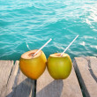 Coconuts cocktail palm tree leaf in Caribbean — Stock Photo #5392203