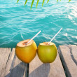 Coconuts cocktail palm tree leaf in Caribbean — Foto de Stock