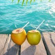 Coconuts cocktail palm tree leaf in Caribbean — Stockfoto