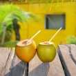 Coconuts straw cocktail tropica yellow house — Stock Photo