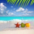 Coconut cocktails juice and starfish in tropical beach — Stock Photo
