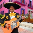 Charro Mariachi playing guitar Mexico houses — Stock Photo #5396965