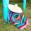 Mexican lazy sombrero hat man poncho nap garden — Stock Photo #5397525