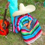 Постер, плакат: Mexican lazy sombrero hat man poncho nap garden