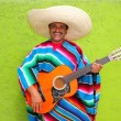Royalty-Free Stock Photo: Mexican typical man playing guitar poncho