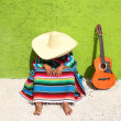 Nap lazy typical mexican sombrero man sitting — Stock Photo #5397609