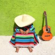 Stock Photo: Nap lazy typical mexicsombrero msitting