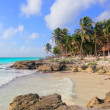 Stock Photo: Caribbean Tulum Mexico tropical turquoise beach