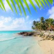 Caribbean Tulum Mexico tropical turquoise beach — Stock Photo