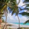 Caribbean Tulum Mexico tropical turquoise beach — Stock Photo