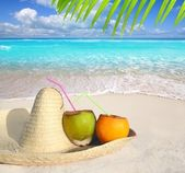 Coconuts in Caribbean beach on mexico sombrero hat — Stock Photo