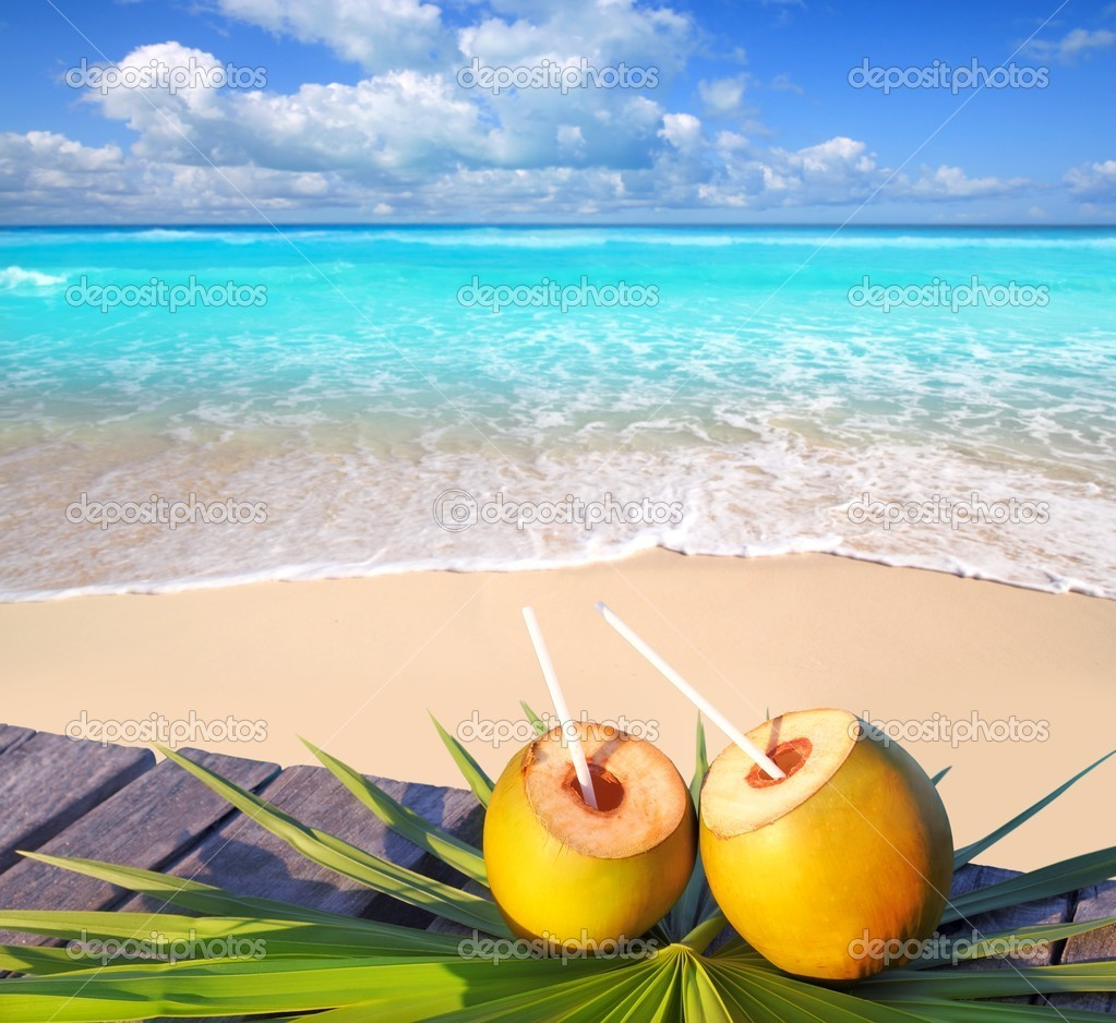 Caribbean paradise beach coconuts cocktail palm trees  Stock Photo #5392190