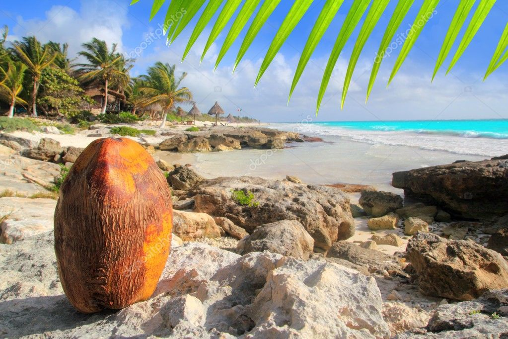 Caribbean Tulum Mexico coconut turquoise beach Mayan Riviera — Stock Photo #5399428