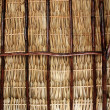 Dried palm tree leaves palapa roof and beams — Stock Photo #5400007