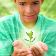 Plant sprout growing glow light teenager boy hands — Stock Photo