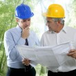 Engineer architect two expertise team plan forest - Stock Photo