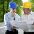 Engineer architect two expertise plan hardhat forest road - Stock Photo