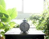 Old alarm bell clock at the window backlit — Stock Photo