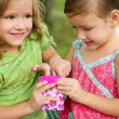 Two little twin sisters playing with pink box — Stock Photo #5500297