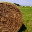 Golden Straw Hay Bales in american countryside — Stock Photo #5500319