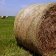 Golden Straw Hay Bales in american countryside — Stock Photo #5500320