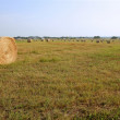 Golden Straw Hay Bales in american countryside — Stock Photo #5500330