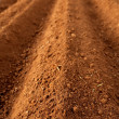 Ploughed red clay soil agriculture fields - Stock Photo