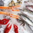 Seafood in market over ice — Stock Photo #5500559