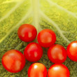 Cherry tomatoes and cabbage leaf — Stock Photo