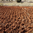 Plowed field in red clay, spain - Stock Photo