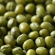 Stock Photo: Green soybeans texture