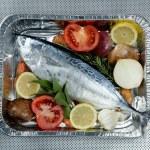 Little tunny, tuna, alby, albacore, silver color. — Stock Photo